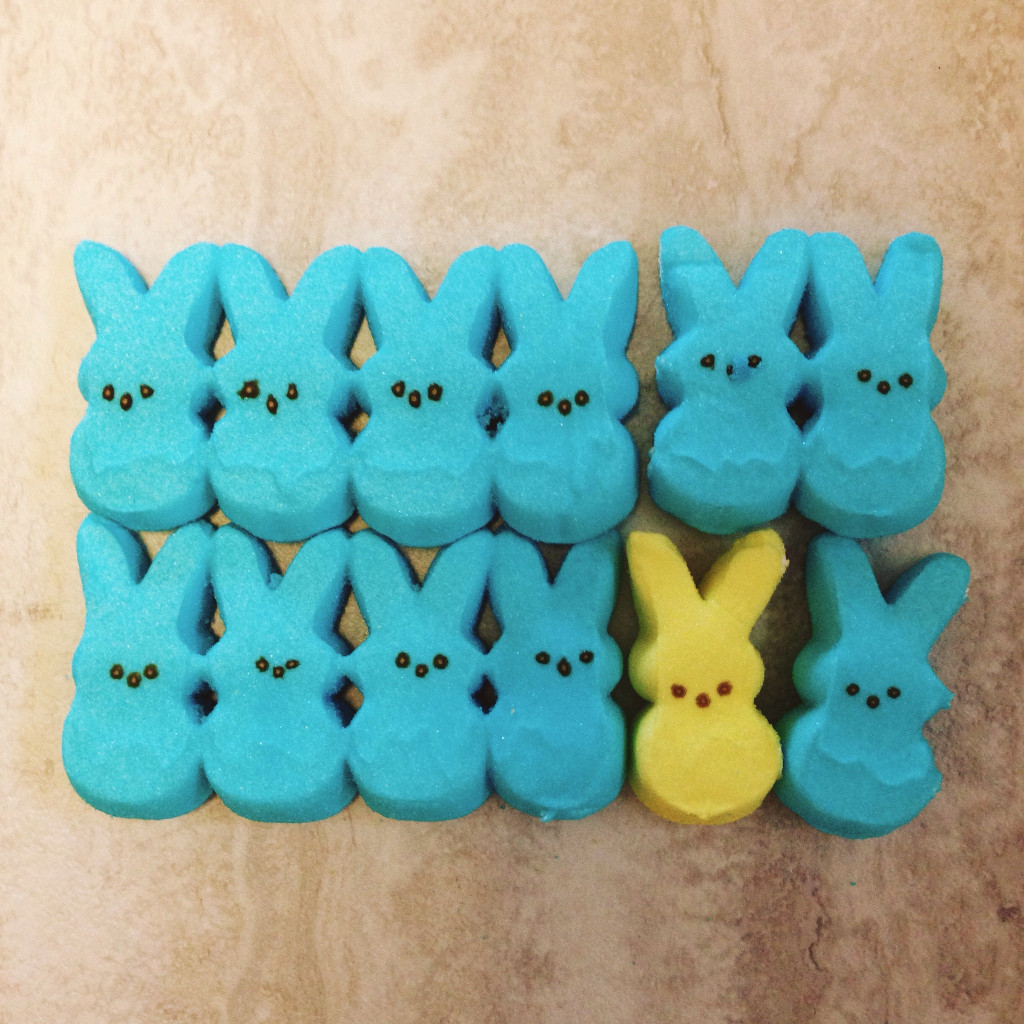 one yellow peep among blue peeps